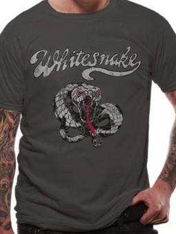 Cid Whitesnake - Make Some Noise Small