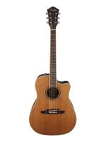 Fender F10300SCE Natural