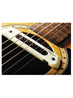 L.r.baggs M80™ Magnetic Soundhole Pickup