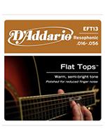 Daddario EFT13 Flat Tops Resophonic
