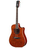 Fender T-bucket 300sce Amber