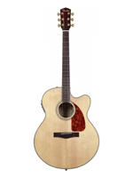 Fender CJ-290SCE Natural + Case