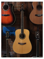 Crafter DX5 SR