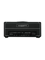 Hiwatt DG-103  David Gilmour Signature