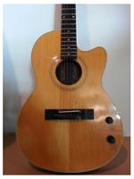 Gibson Chet Atkins SST