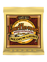 Ernie Ball 2003 - Earthwood Medium Light