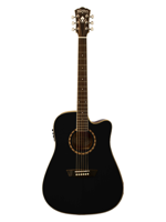 Washburn WD 10Sce Black