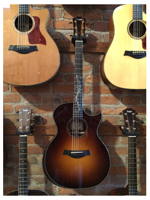 Taylor GA Custom Sunburst