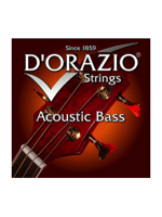 D'orazio 80/20 Acoustic Bass