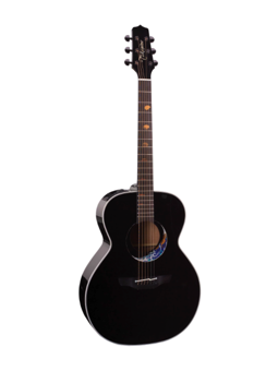 Takamine Limited Edition 2008