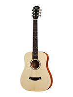Taylor Baby 305 BT1