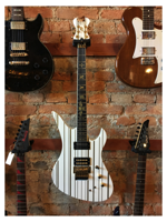 Schecter Synyster  Custom