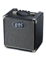 Ebs Session 30W Combo 8