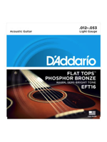 Daddario EFT 16