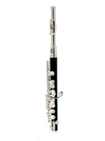 Soundsation SFP-10 C key piccolo flute